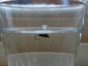 Slik ligger den i vannet, den flyter på fallskjerm hackelet.